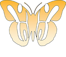 3D Therapy